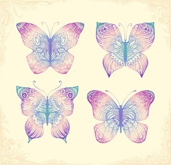 Set of beautiful butterflys. Hand drawn doodle animal.