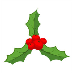 Sprig of mistletoe isolated. Traditional Christmas plant. Holida
