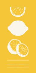 Vector lemon set.  Hand drawn sliced lemon. Kitchen illustration