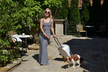 Elegant woman in black and white summer dress in company with her pet (Cavalier King Charles Spaniel) dragging white suitcase