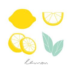 Vector lemon set.  Hand drawn sliced lemon. Kitchen illustration on the white background