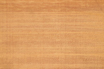 Texture of a tree - a red Canadian cedar