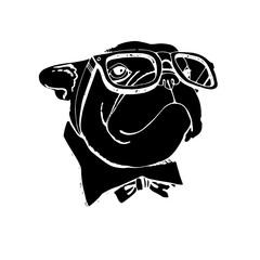 bulldog, dog, animal, french, vector, illustration, pet