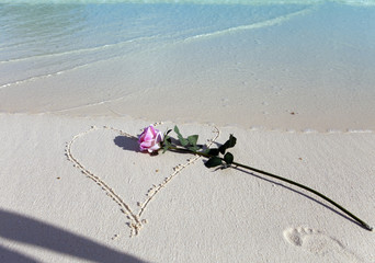 the rose lies on sand in the drawn heart and a shadow from the hand which has thrown her