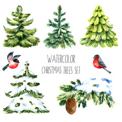 Watercolor christmas trees.