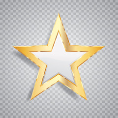 one gold white star