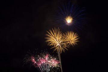 Firework in the night sky