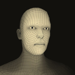 Head of the Person from a 3d Grid. Face Scanning.