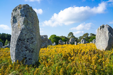 Megalithic alignments of standing stones in Brittany Wall mural