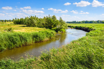 Curved stream in a rural landscape in the summer season