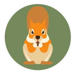 squirrel vector illustration Flat style
