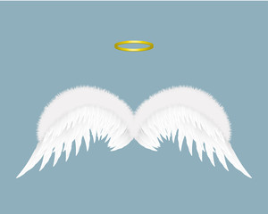Angel wings and halo isolated on background. Vector illustration.