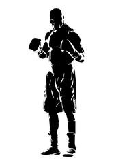 Shilouette Boxer