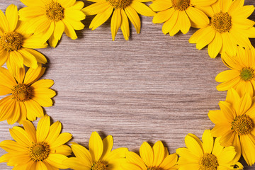 Frame of yellow flowers on wooden background. Vivid yellow summer flowers. Place for design