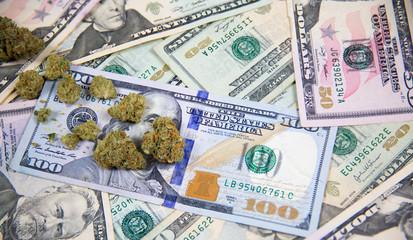 Marijuana bud on a background of various United States paper dollar bills
