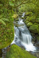 Waterfall among green mossy rocks