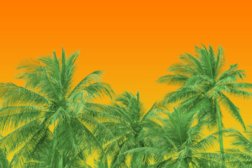 Tropical Vintage Style Background