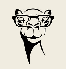 hipster camel wearing glasses. vector illustration for t-shirt, poster, print design.
