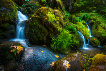 Waterfall Background Oregon Fall Colors