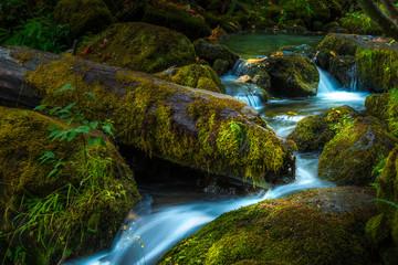 Beautiful Cascading water of Watson Creek Oregon Wall mural
