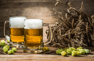 Two mugs of beer on table with hop and wheat