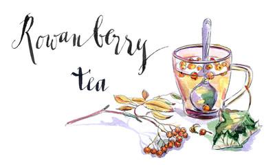 Cup of rowanberry tea