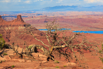 Erosion at Canyonland National Paark