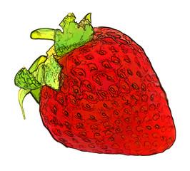 Dessin d'une fraise