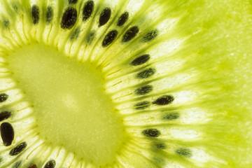 Macro of a thin slice of Kiwi