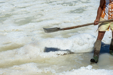 Worker shoveled the salt crystallizes out of the ground in salt farm , filled with natural salt from the sea.