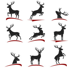 Deer set. Vector