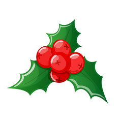 Christmas cartoon colorful holly on a white background. Vector.