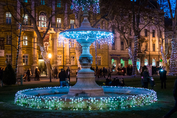 Fountain in christmas lights, evening