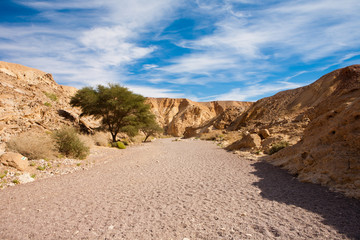 Landscape at Red Canyon, Israel