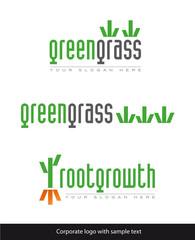 company grass root