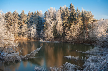 Landscape winter forest. The rime on trees and a lake covered with ice. The nature bound with ice and a lace of frost. Winter snow season in the wild.