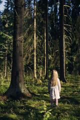 Finland, Paijat-Hame, Heinola, Girl (4-5) standing in spruce forest