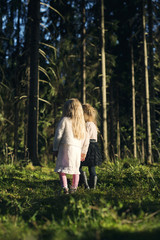Finland, Paijat-Hame, Heinola, Two girls (2-3, 4-5) standing in spruce forest
