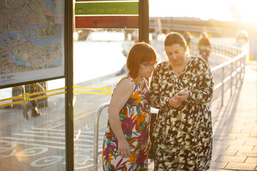 Sweden, Sodermanland, Stockholm, Sodermalm, Slussen, Woman with down syndrome standing by friend checking smart phone