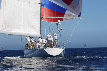 Group of sailors sailing in yacht