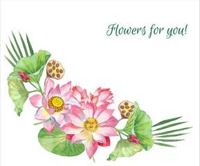 Lotus Flowers. Hand drawn illustration