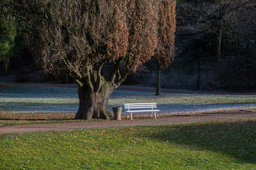 Park, Bank, Herbst, Frost