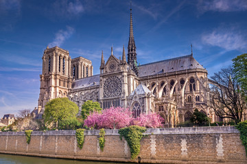 Notre-dame Wall mural