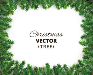 Background with vector christmas tree branches and space for text