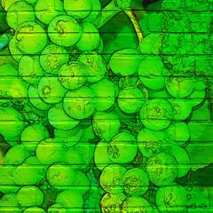 Art urbain. Grappes de raisins blancs