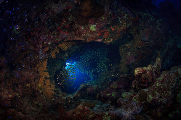 Sunlight pours down into a dark underwater hole in a cave of reef in Red sea, Egypt. Beautiful rock islands and world class scuba diving and snorkeling.