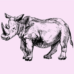 Rhinoceros doodle style sketch illustration hand drawn vector