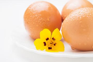 Three chicken eggs and yellow flower