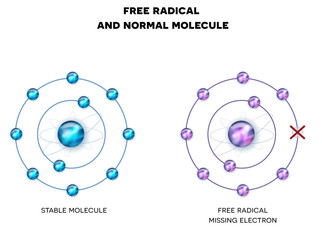 Free radical with missing electron, unpaired electron and stable, normal molecule.