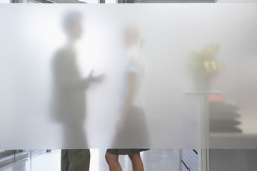 Side view of a male office worker talking to female colleague behind translucent wall in office